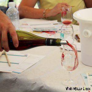 animation dégustation vin oenologie