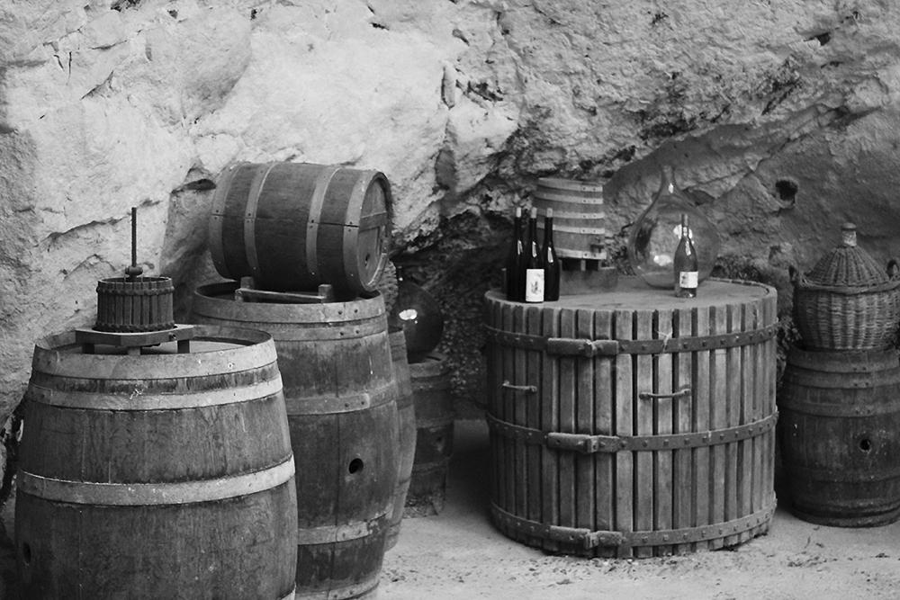 photo viticole