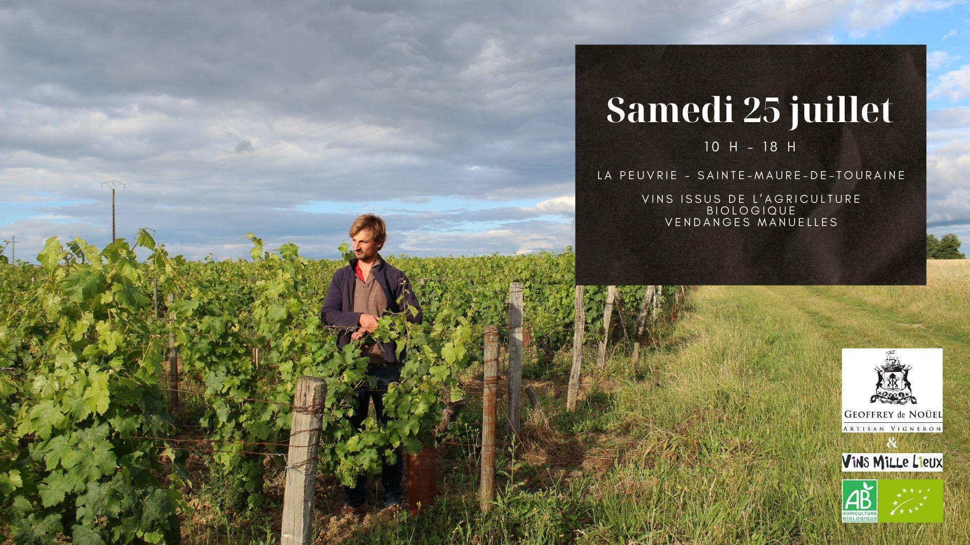 communication vigneronne viticole