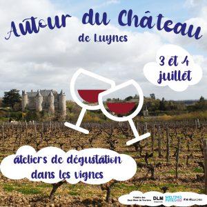 atelier dégustation vin Touraine Luynes 37