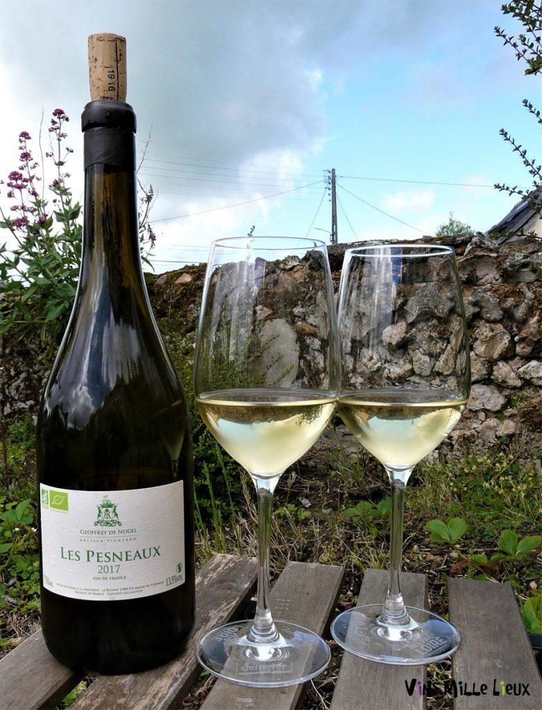Geoffrey de Noüel Les Pesneaux - Chardonnay